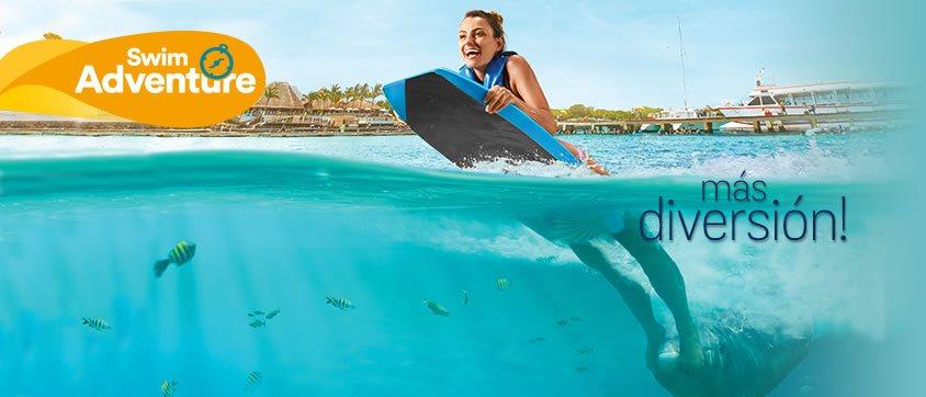 Dolphin Swin Adventure