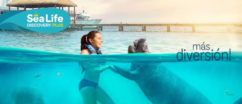 Sea Life Discovery Plus